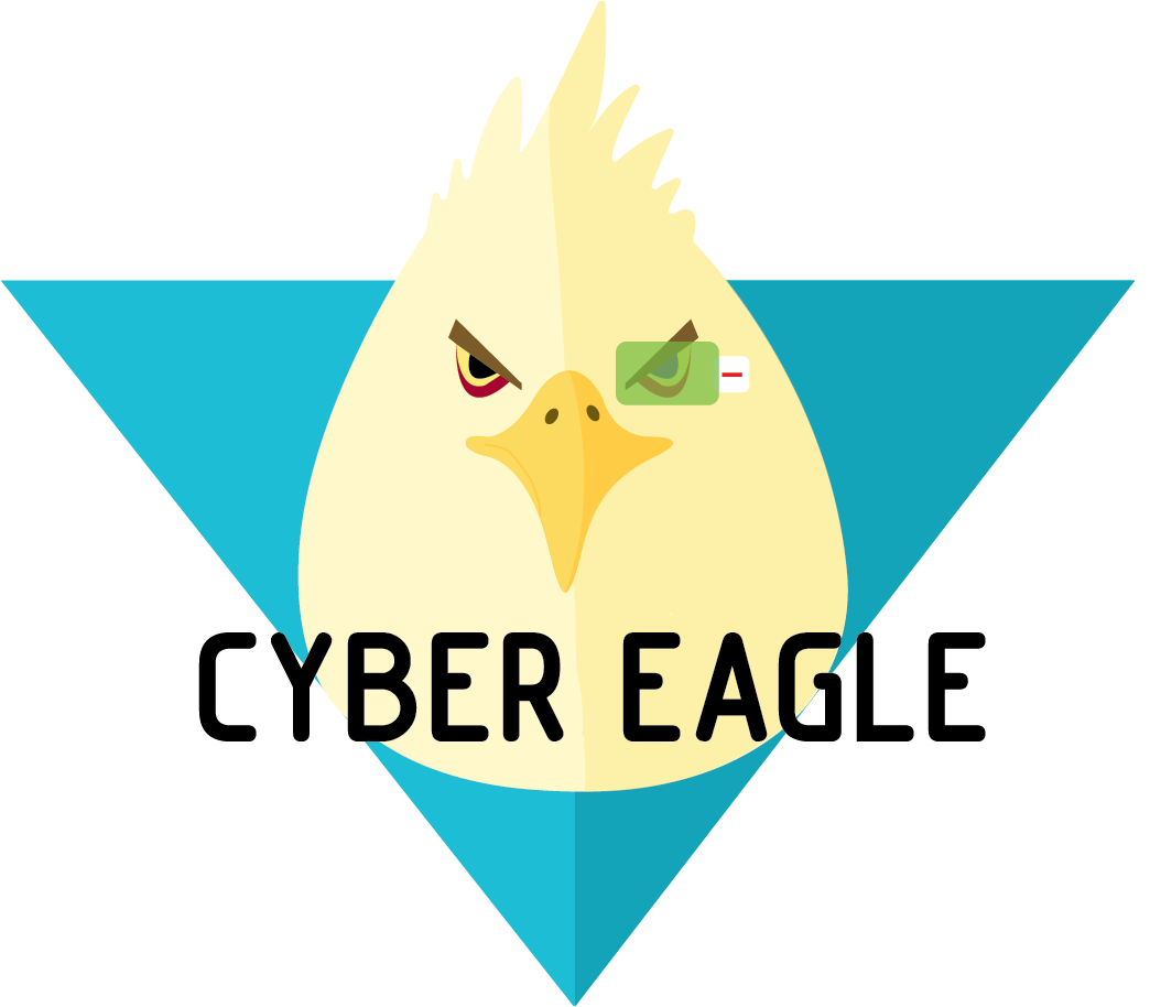 Cyber Eagle | Professional penetration testing services